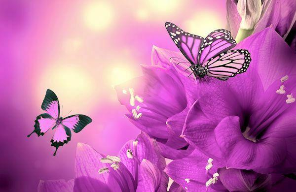 Mariposa de otoño